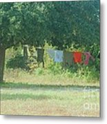 Laundry Hanging From The Tree Metal Print