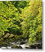 Lauragh River West Cork Metal Print