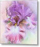 Lavendar Dreams Metal Print