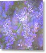 Lavender 5 Metal Print