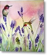 Lavender And Hummingbirds Metal Print