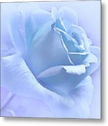 Lavender Blue Rose Flower Metal Print
