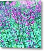 Lavender Color Flowers Metal Print