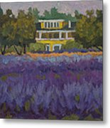Lavender Farm On Vashon Island Metal Print