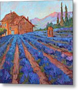 Lavender Field Provence Metal Print