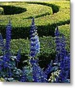 Lavender Maze Metal Print