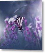 Lavender Queen... Metal Print