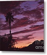 Lavender Red And Gold Sunrise Metal Print
