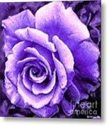 Lavender Rose With Brushstrokes Metal Print