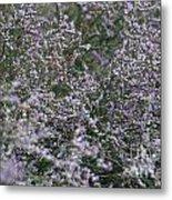 Lavender Silver Lining Metal Print
