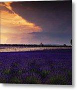 Lavender Thunderstorm Metal Print