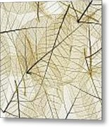 Layered Leaves Metal Print