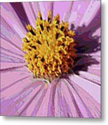 Layers Of A Cosmos Flower Metal Print
