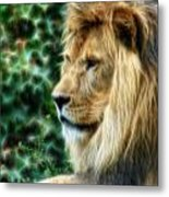 Lazy Boy Day Dream At The Buffalo Zoo Metal Print