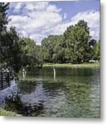 Lazy Day On The Rainbow River Metal Print