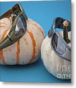 Lazy Days Of Fall Metal Print