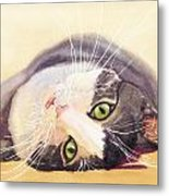 Lazy Kitty Metal Print
