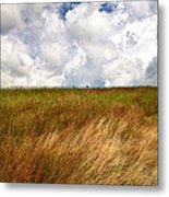 Leaden Clouds Over Field Metal Print