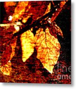 Leaf And Light Abstract Metal Print by Natalie Kinnear