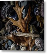 Leaf And Stones Metal Print