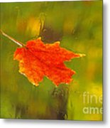 Leaf In Rain Metal Print