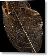 Leaf Lace Metal Print by Anne Gilbert