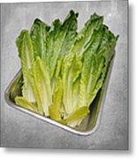 Leaf Lettuce Metal Print by Andee Design