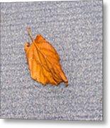 Leaf On Granite 1 Metal Print