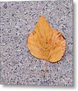 Leaf On Granite 2 Metal Print