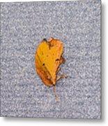 Leaf On Granite 3 - Square Metal Print