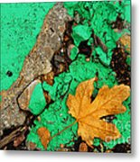 Leaf On Green Cement Metal Print
