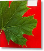 Leaf On Sign Metal Print