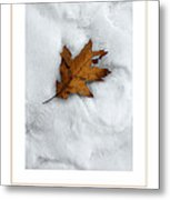 Leaf On Snow Poster Metal Print