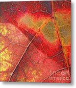 Leaf Pattern_1 Metal Print
