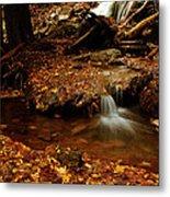 Leaf Splatter Metal Print