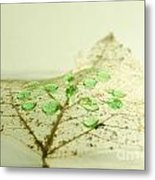 Leaf With Green Drops Metal Print