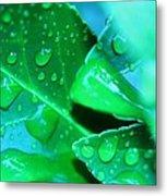 Leafish Metal Print