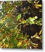 Leafy Tree Bark Image Metal Print