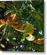 Leafy Tree Image Metal Print