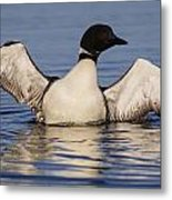 Lean To The Left Metal Print