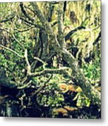 Leaning Branches Metal Print