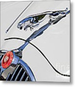 Leaping Jaguar Metal Print
