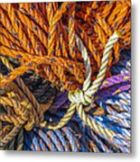 Learn The Ropes Metal Print