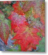 Leaves 2 Metal Print