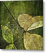 Leaves Afloat Metal Print