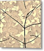 Leaves Fade To Beige Melody Metal Print by Jennie Marie Schell