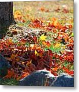 Leaves Falling Metal Print by Lorena Mahoney