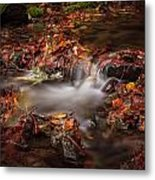 Leaves In The Creek Metal Print