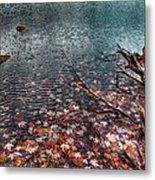 Leaves In The Lake Metal Print