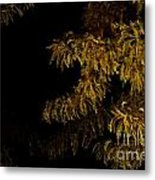Leaves In The Night I Metal Print